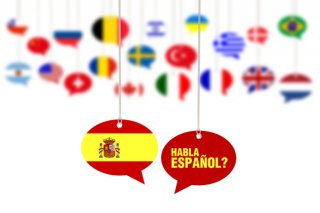 Spanish Curriculum